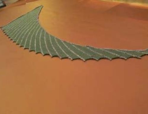 Drachenschwanz